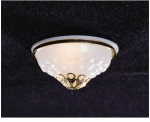 Ceiling Lamp w/Removable Frosted Shade