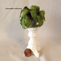 Fern on pedestal