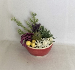 Dollhouse Succulent with Pink Vase
