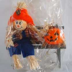 Miniature Scarecrow and Pumpkin on Park Bench